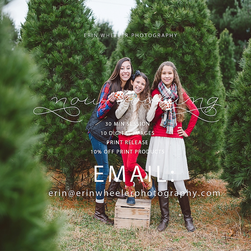 Maryland Christmas Mini Sessions